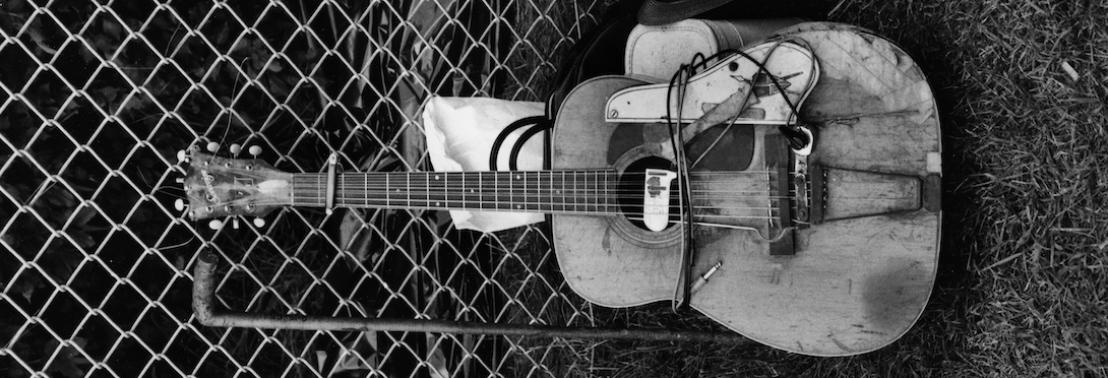 delmark-guitar